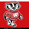 Badgers29