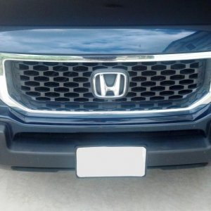 2009-2014 OEM brush guard and OEM grille